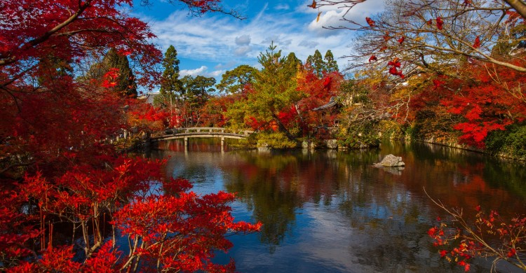 """""""Cazi de 7 ori si ridica-te de 8 ori"""" – Sfaturi minunate din intelepciunea japoneza care iti vor usura viata"""