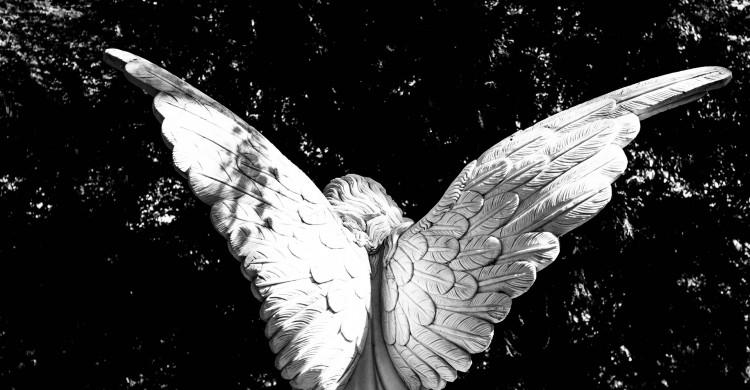 Îngerii te îndrumă întotdeauna – și iată cum să-ți dai seama