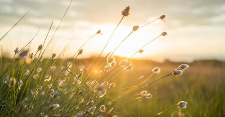 O zi frumoasă nu depinde de cât soare este afară, ci de câtă lumină avem în interior