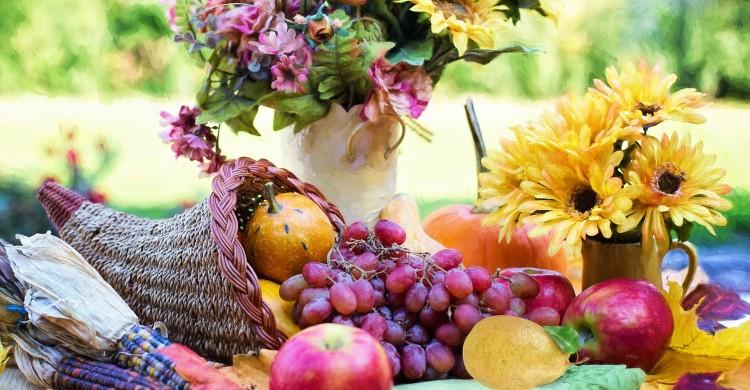 Fii recunoscător pentru toate, pentru bine sau rău, pentru soare sau nori. Viața în sine este un dar.