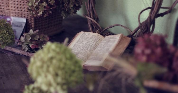 Omraam Aivanhov: Oamenii nu se vor putea transforma citind cărţi dintr-o bibliotecă